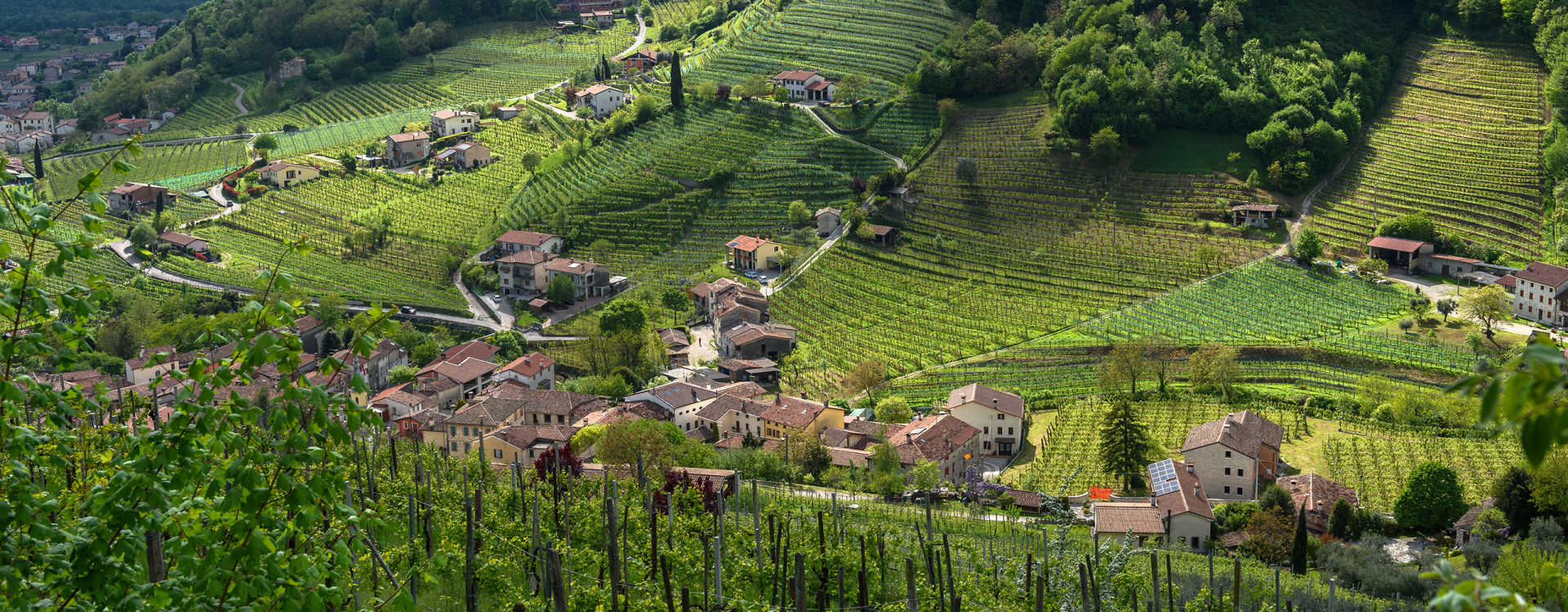 Image for Prosecco Italy content section