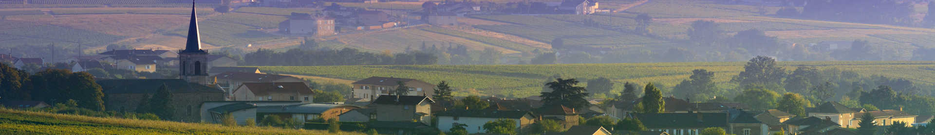 Image for Burgundy Wine France content section