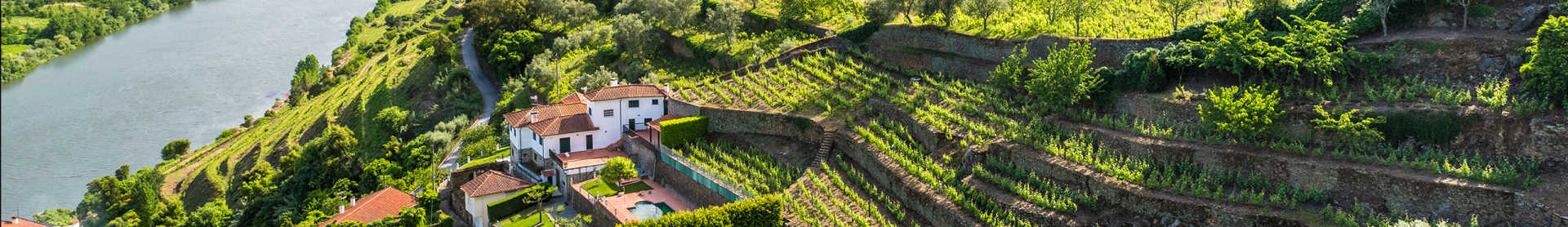Image for Vinho Verde Wine Portugal content section