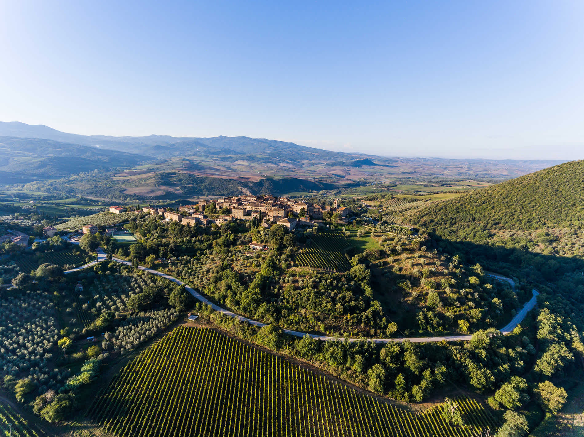 Image for Montalcino Wine Tuscany, Italy content section