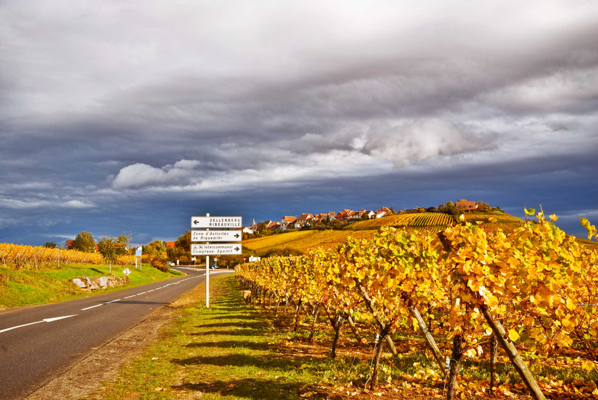 Image for Alsace Wine France content section