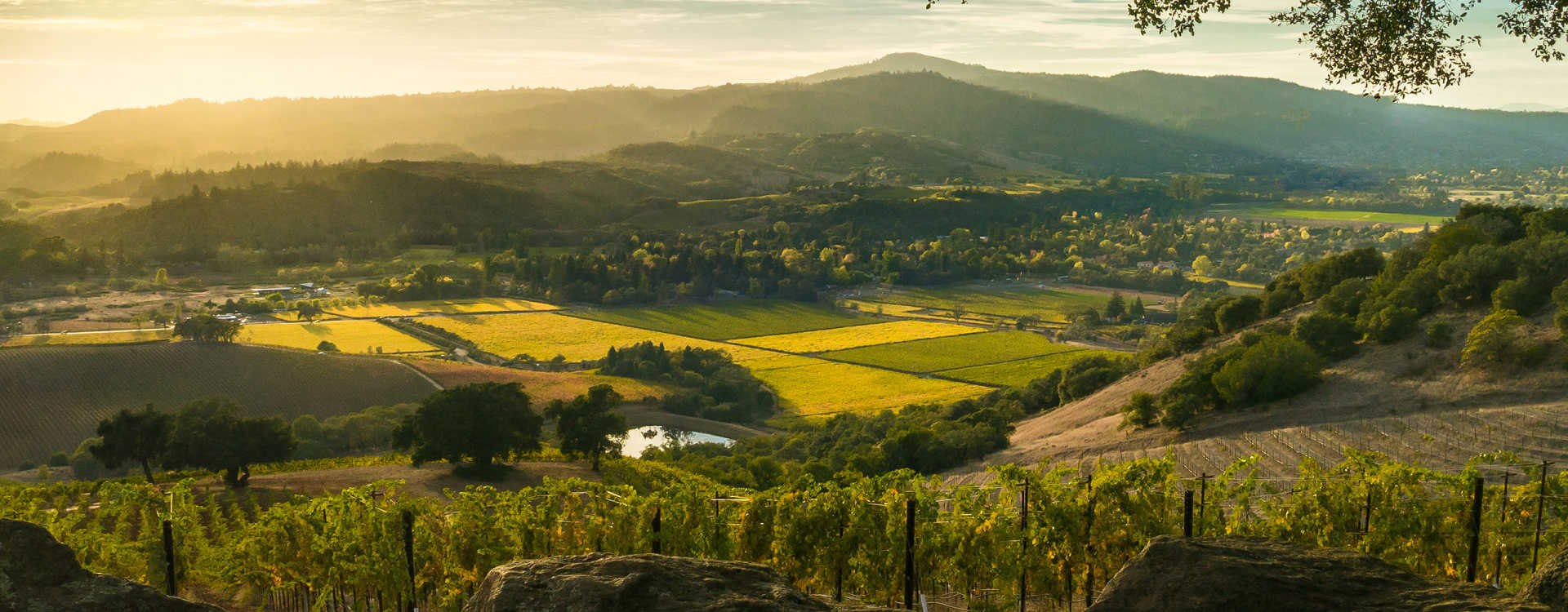 Image for Sonoma Mountain content section