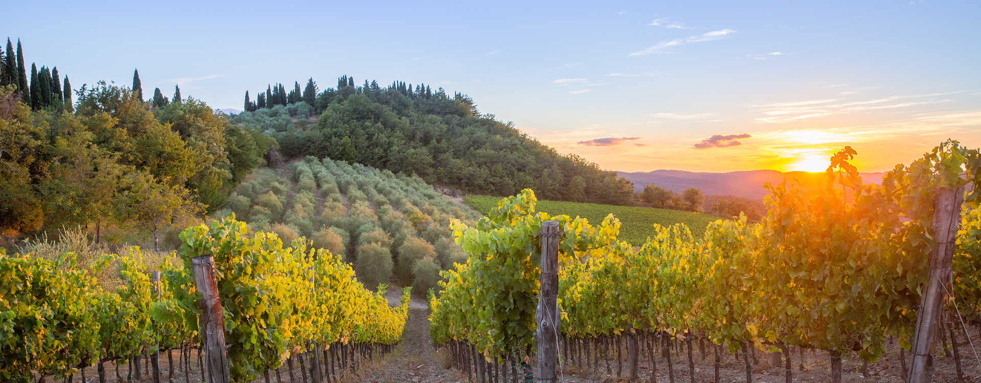 Image for Chianti Wine Tuscany, Italy content section