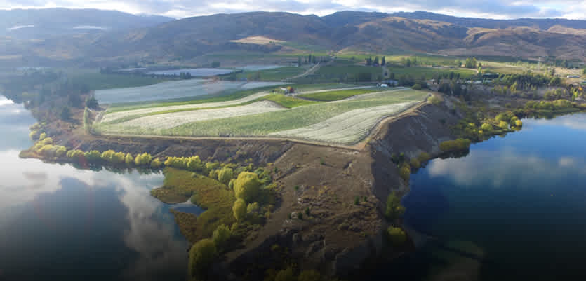 World-Class Wines & Cutting-Edge Sustainability Get To Know New Zealand
