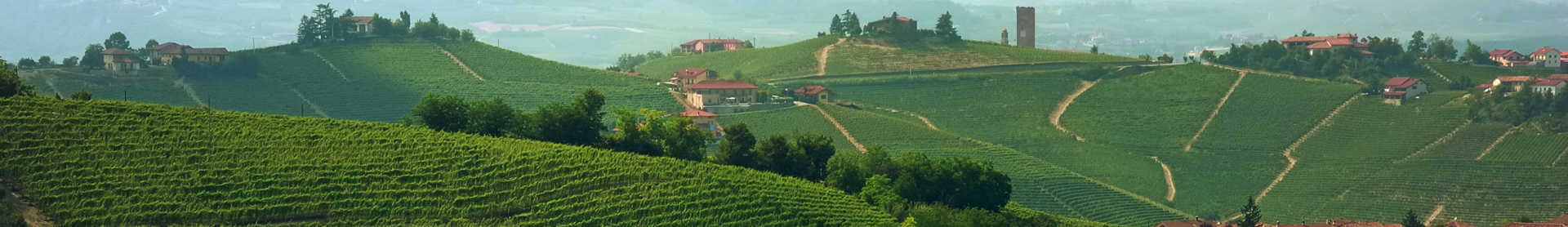 Image for Barolo Piedmont, Italy content section
