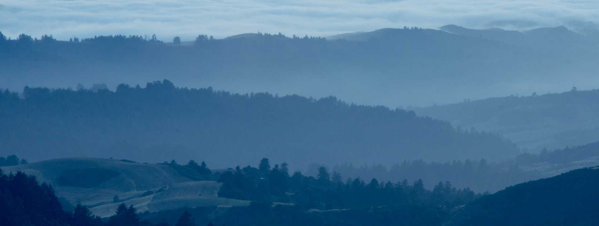 Image for Santa Cruz Mountains content section