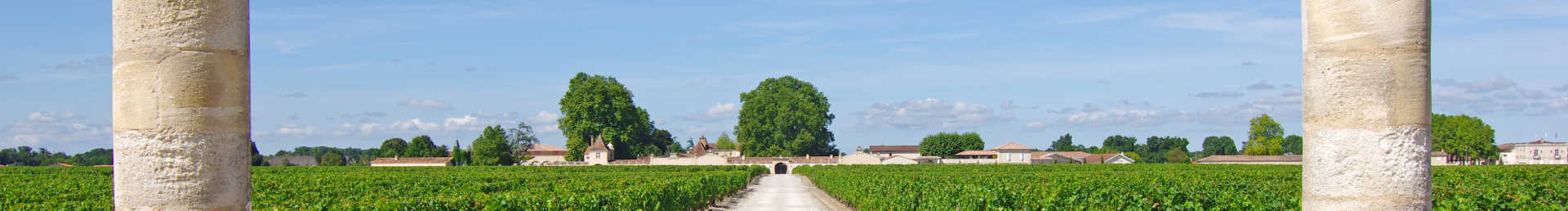 Image for Pessac-Leognan Wine Bordeaux, France content section