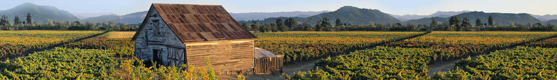Image for Dry Creek Valley content section