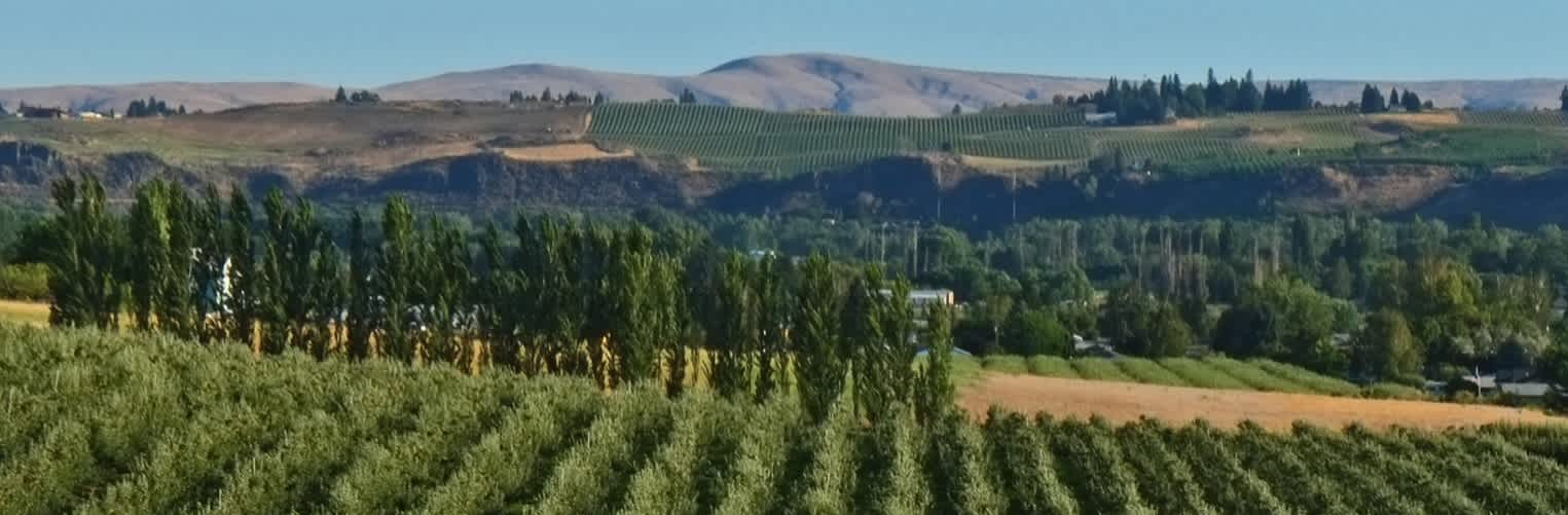 Image for Horse Heaven Hills Wine Columbia Valley, Washington content section