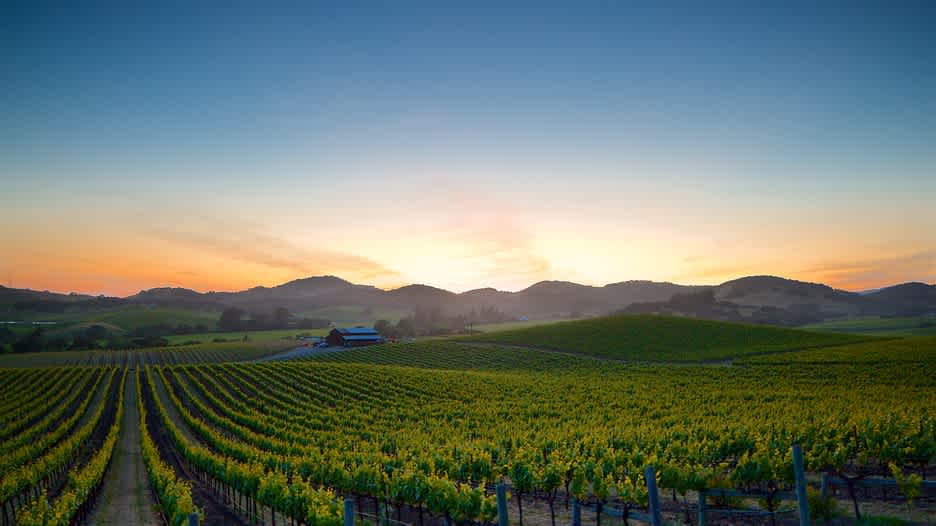 Image for California Cabernet Sauvignon content section
