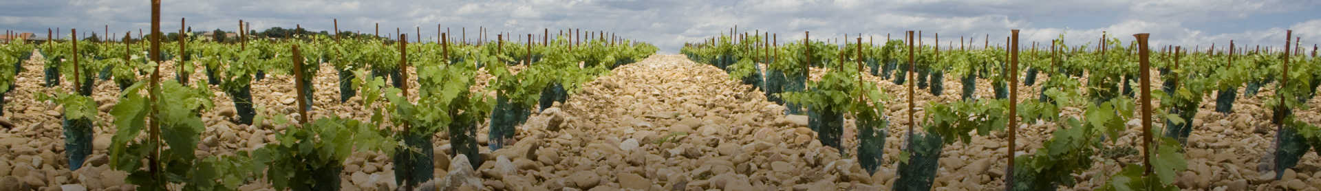 Image for Chateauneuf-du-Pape Rhone, France content section