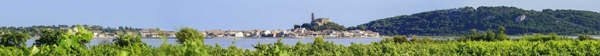 Image for Languedoc Wine South of France content section