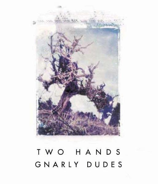 Two Hands Gnarly Dudes Shiraz 2010 Front Label
