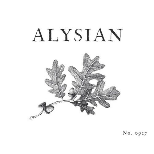Alysian Rochioli & Allen Vineyards Pinot Noir 2013 Front Label