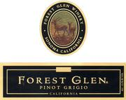 Forest Glen Pinot Grigio 1999 Front Label