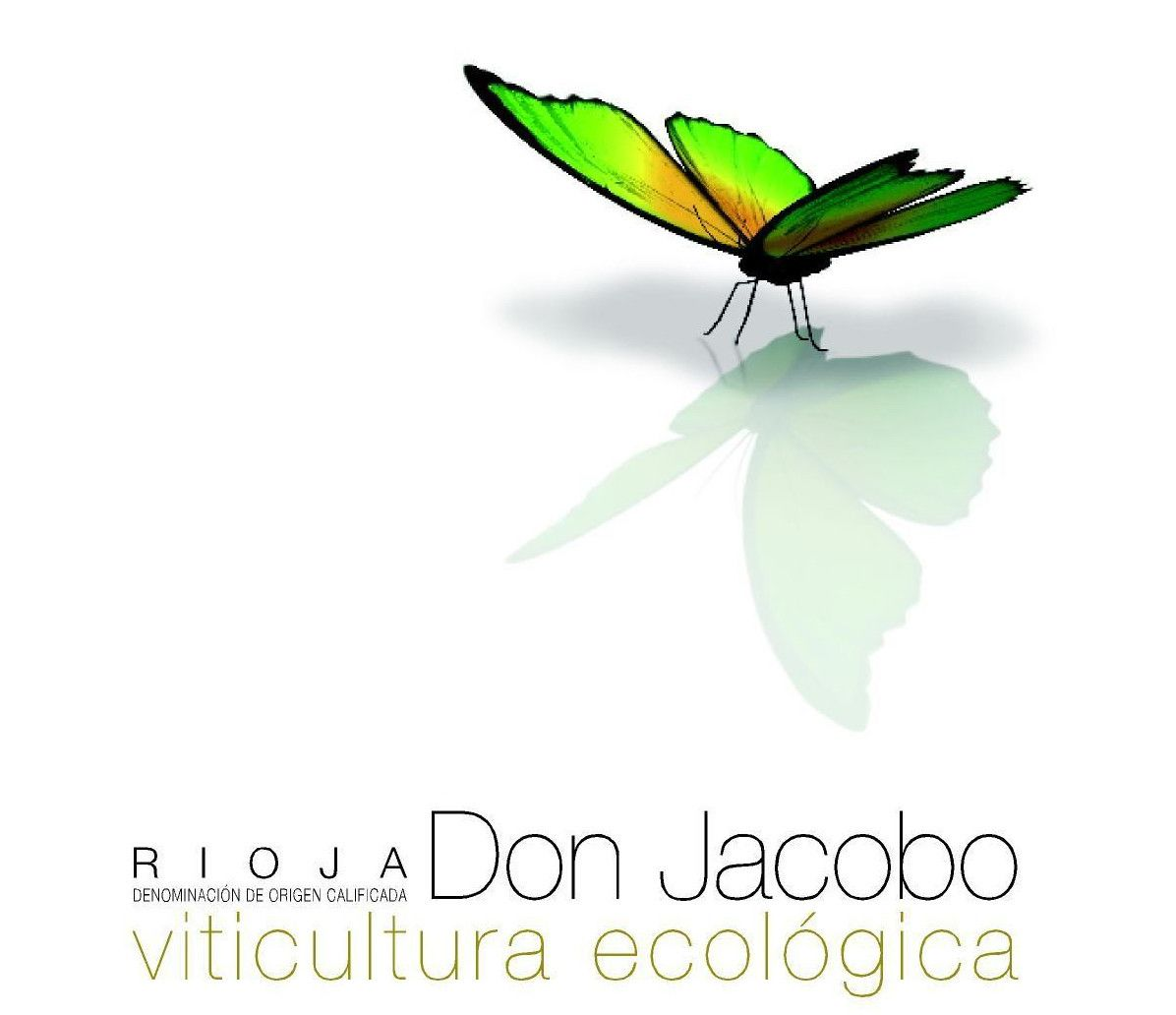 Don Jacobo Tino Ecologico 2015 Front Label
