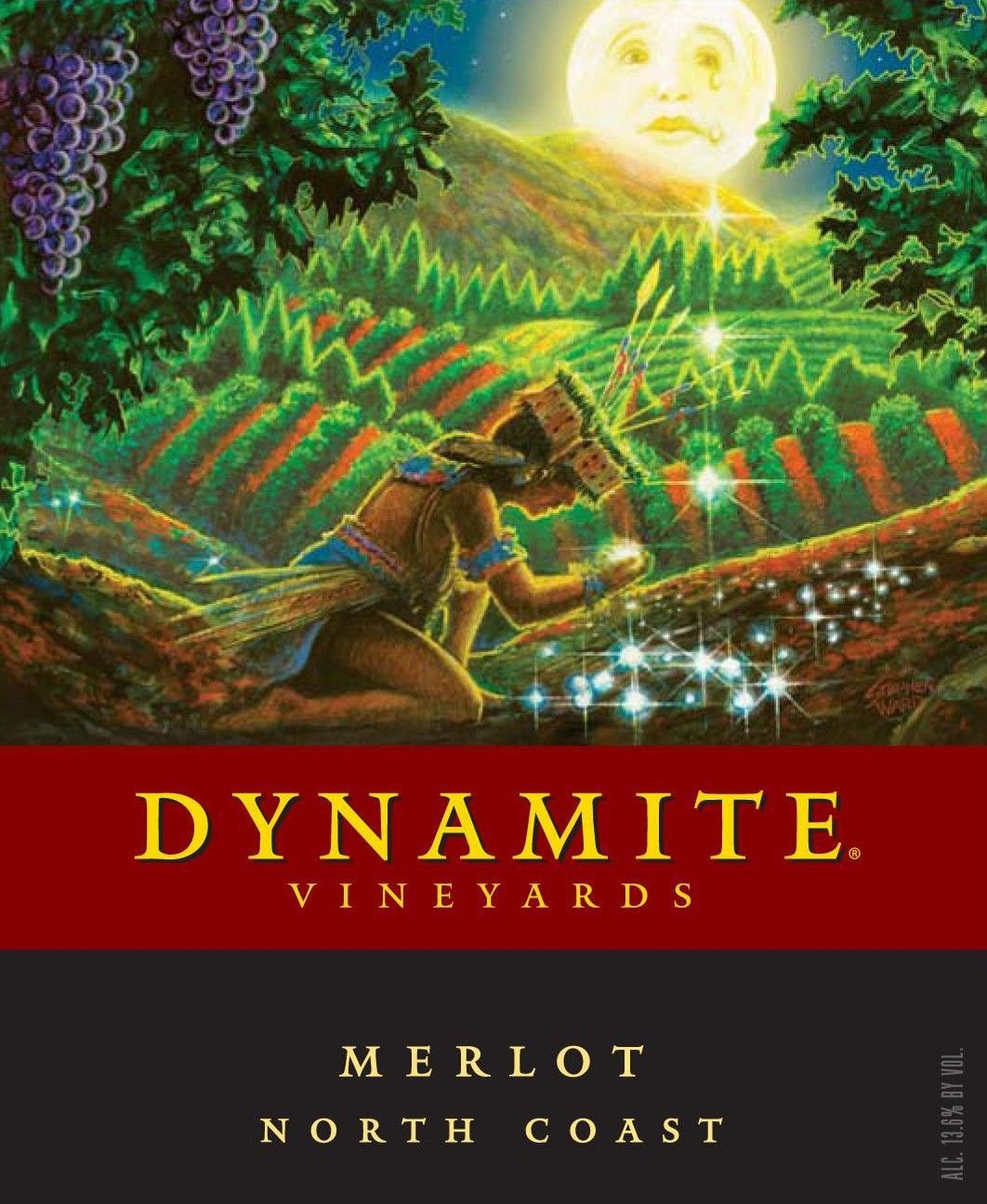 Dynamite Vineyards Merlot 2009  Front Label