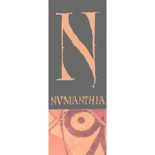 Numanthia Toro 2003 Front Label