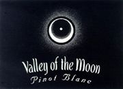 Valley of the Moon Pinot Blanc 2006 Front Label