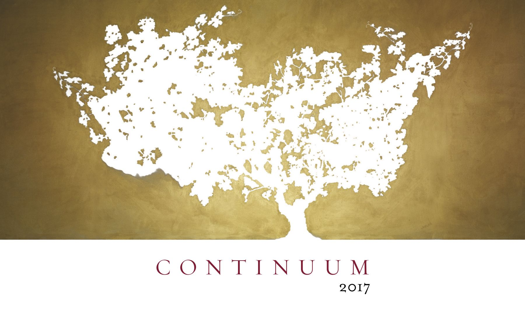 Continuum  2017  Front Label