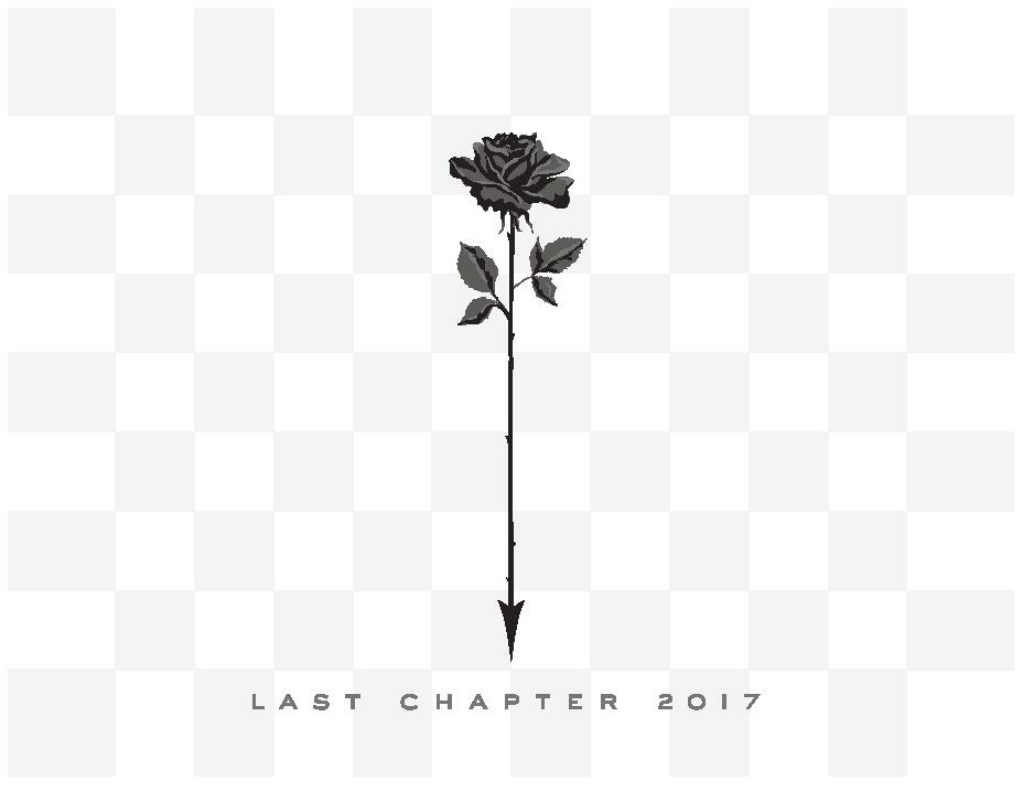 Chapter 24 Last Chapter Pinot Noir 2017  Front Label