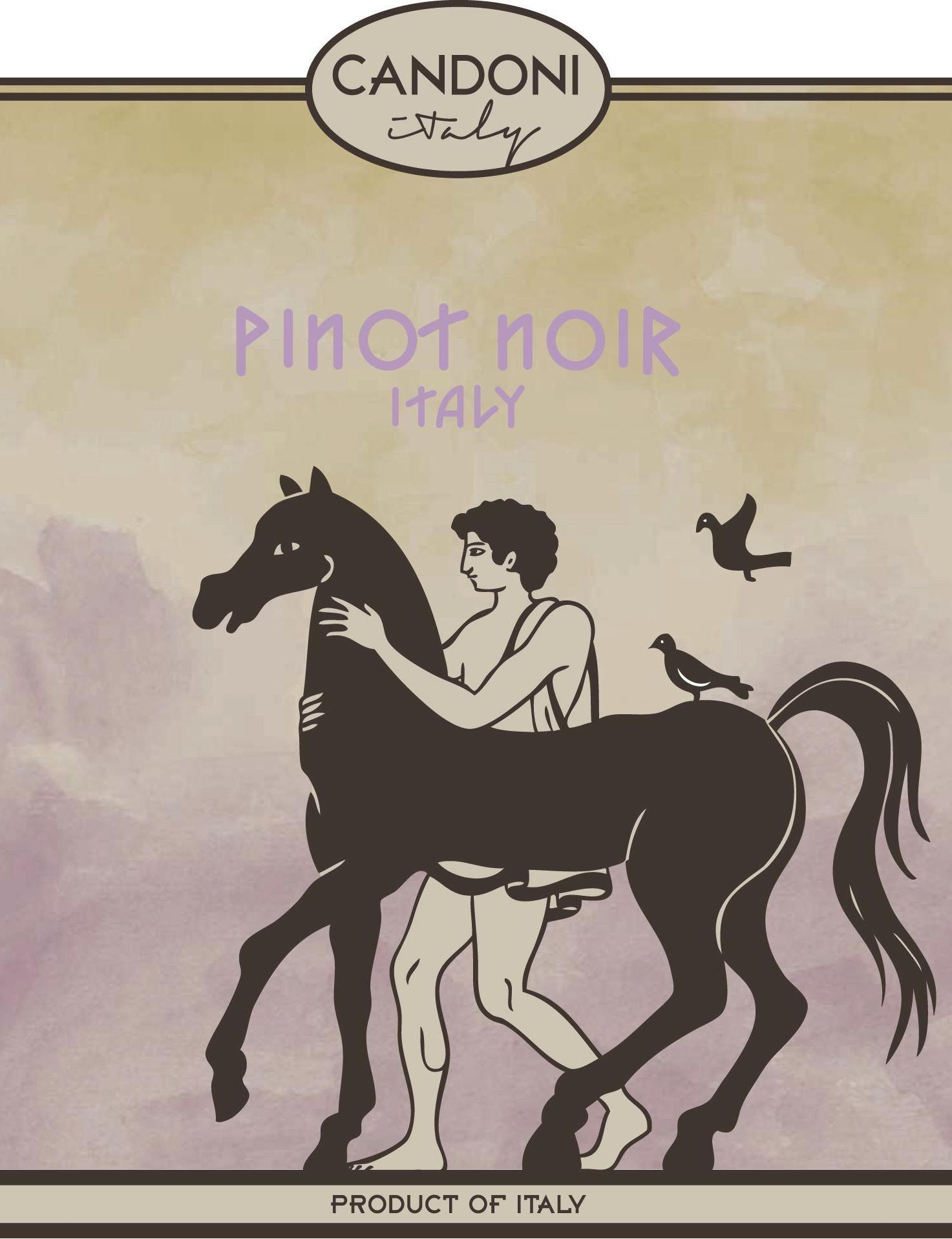 Candoni Pinot Noir 2018  Front Label