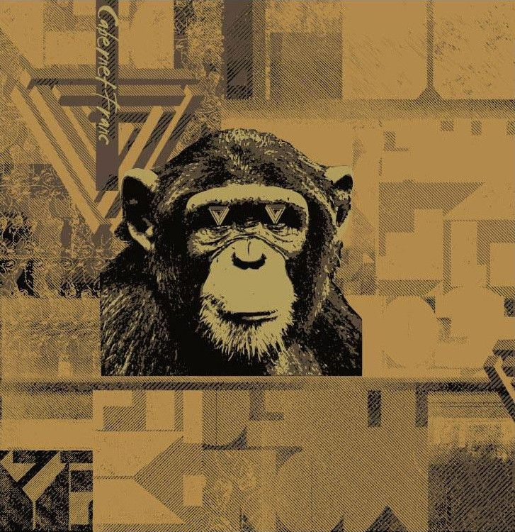 The Infinite Monkey Theorem Cabernet Franc 2014 Front Label
