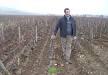 Francois Carillon Francois Carillon in the vineyard Winery Image