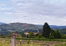 Columna Winery Image