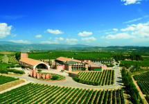 Juve Y Camps The Winery Winery Image