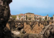 Chateau de Beaucastel Chateau de Beaucastel Winery Image