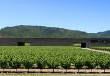Dominus Estate Dominus Estate in Yountville Winery Image
