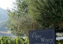 Elyse Winery Image