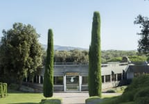 Ornellaia The Estate Entrance Winery Image