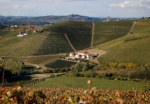 Marchesi di Gresy The Martinenga Estate Winery Image
