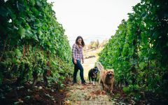 Adelsheim Kelli Gregory, Vineyard Manager Winery Image