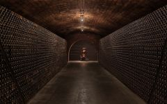 Freixenet Freixenet Cellar and Wine Library Winery Image