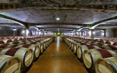 Chateau Smith Haut Lafitte Red Wine Cellar Winery Image