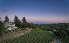 Lail Vineyards Mole Hill Winery Image