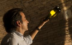 Codorniu Winemaker Bruno Colomer Winery Image