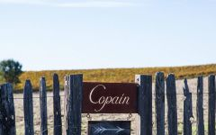 Copain  Winery Image