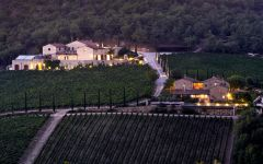 Brancaia Estate Vineyard Winery Image
