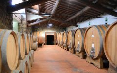 Fontodi  Winery Image