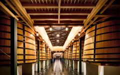 Chateau Mouton Rothschild The Vat Room Winery Image