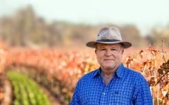 Caymus Chuck Wagner, Owner of Caymus Vineyards Winery Image