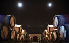 Chateau d'Issan Barrel cellar Winery Image