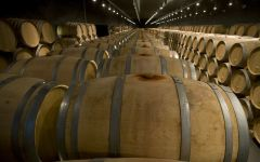 Bodegas Cepa 21 Barrel room Winery Image