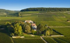 Louis Latour The Château  Winery Image
