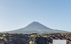 Azores Wine Company Pico Mountain Winery Image