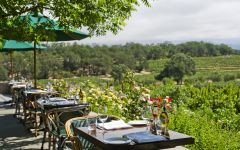 Francis Ford Coppola Winery RUSTIC Dining Winery Image
